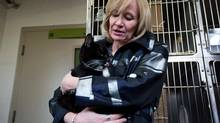 Laureen Harper, holding Gramps, a three-legged cat up for adoption at the B.C. SPCA Vancouver branch, on April 26, 2013, was introducing the Just for Cats Internet video festival Thursday night when activist Hailey King shouted out from the crowd and demanded Ottawa take action on the aboriginal women issue. (Darryl Dyck/The Canadian Press)
