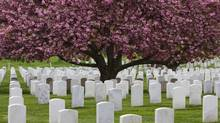 Arlington National Cemetery (Andrea Pelletier/Getty Images/iStockphoto)