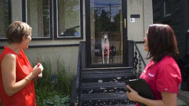 A greyhound watches veterinarian Dr. Wendy McClelland (R) makes an animal house call for Sarah Palmer in Calgary Alberta, July 3, 2014. Vets To Go Inc. believes house calls are the best way to delivery veterinary care. (Todd Korol For The Globe and Mail)
