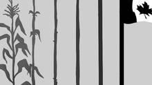 Prison illustration by Anthony Jenkins / The Globe and Mail (Anthony Jenkins/The Globe and Mail)