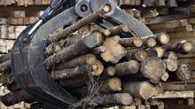 The powerful softwood lumber lobby in the United States is suggesting it could thwart Canada's efforts to join a Pacific free trade zone if its neighbour refuses to address long-standing irritants. (Jacques Boissinot/THE CANADIAN PRESS/Jacques Boissinot/THE CANADIAN PRESS)