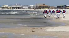 Members of a clean-up crew comb the beach on Dauphin Island, Ala. (� Brian Snyder / Reuters/REUTERS)
