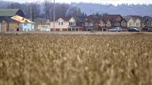 Residential construction pushes into farmland in Milton in this Dec. 10, 2012, photo. (Peter Power/The Globe and Mail)