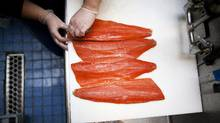 Alanna Kariotakis pin-bones Sockeye Salmon fillets at the Salmon Shop on Granville Island in Vancouver. (Rafal Gerszak for The Globe and Mail/Rafal Gerszak for The Globe and Mail)