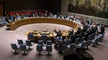 Members of the United Nations Security Council vote on a resolution about the ongoing crisis in Iraq at United Nations headquarters in the Manhattan borough of New York August 15, 2014. (Carlo Allegri/Reuters)