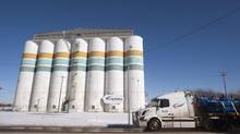 A Viterra grain storage facility in Saskatoon. The federal government has approved the acquisition of Viterra by Swiss-based Glencore International. (Liam Richards/THE CANADIAN PRESS)