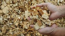 China has imposed new dumping duties on a type of wood pulp used to make cloth, cellophane, tires and other products. (BRIAN SNYDER/Reuters)