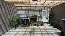 The Weists of Calgary opted to install a clear, weather-proof covering on their garage. It proved much less costly, while opening up the space for greenhouse potential, as well as for hanging out in the summer. (Mieka West)