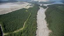Contents from a tailings pond is pictured flowing down Hazeltine Creek and into Quesnel Lake in central B.C. on Aug. 5, 2014. (Jonathan Hayward/The Canadian Press)