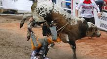 Trevor Kastner of Ardmore, Oklahoma gets bucked off the bull Jett in the bull riding event during the 101st Calgary Stampede rodeo in Calgary, Alberta, July 5, 2013. (TODD KOROL/REUTERS)