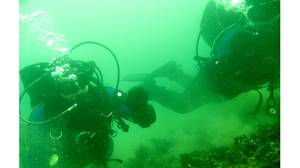 Diving in northern waters requires a full-body dry suit and about 70 pounds of equipment.
