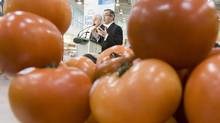 Health Minister Tony Clement announces the new Canada Food Guide at a news conference in Ottawa in February, 2007. (TOM HANSON/the Canadian press)