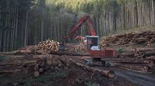 "A section of forest is harvested by loggers near Youbou, B.C. Wednesday, Jan. 14, 2015. British Columbia's envoy in the latest softwood-lumber dispute will be back in Washington next week and says recent comments by U.S. President Donald Trump's trade nominee show he's ""clearly got his crosshairs on Canada."" (JONATHAN HAYWARD/THE CANADIAN PRESS)"