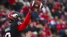 Calgary Stampeders coach Dave Dickenson 'has kept us focused all year,' according to quarterback Bo Levi Mitchell. (Jeff McIntosh/The Canadian Press)