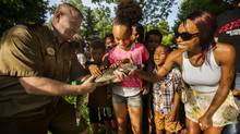 Toronto, Ontario - July 7, 2014 -- CAIMAN -- Reptile expert Lee Parker holds the caiman, a small alligator-like reptile, that he caught in High Park's Catfish Pond as Jasmine Louie (C) and Candy Carr (R) look on in Toronto, Monday July 7, 2014. (Mark Blinch)