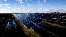 Responsible investing, in which investments are bound by environmental, social and corporate-governance considerations, rather than merely financial performance, is growing in Canada. (Brent Lewin/Bloomberg)