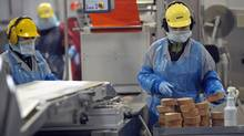 Workers man production lines at Maple Leaf Foods in Toronto on Dec. 15, 2008. (Fred Lum/Fred Lum/The Globe and Mail)