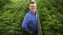 Philippe Lucas, executive director of the Canadian Medical Cannabis Council and head of patient services at Nanaimo-based grower Tilray, recently launched an e-petition asking Veterans Affairs to begin covering cannabis oil extracts. (John Lehmann/The Globe and Mail)