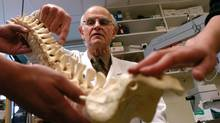 Dr. Charles Tator discusses spinal injuries with a model of a human spine with some research fellows in the reserach laboratory of the Krembil Neuroscience Centre located in Toronto Western Hospital in this 2004 file photo. (Louie Palu/The Globe and Mail)