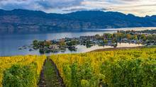 George Galbraith's family has been living in the Okanagan Valley for generations and many of his relatives earned their living from the freight trains that travelled between Kelowna, and Vernon, B.C. (Getty Images/iStockphoto)