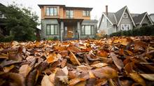 A yard full of leaves suggests a vacant house in the West Point Grey neighbourhood area of Vancouver on October 29, 2015. (Ben Nelms/GLOBE AND MAIL)