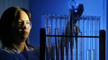 A researcher mixes a chemicals at QLT labs in Vancouver in this file photo. (JOHN LEHMANN/JOHN LEHMANN/GLOBE AND MAIL)