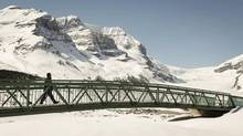 A tourist crosses a foot bridge over a road leading to the Athabasca Glacier part of the Columbia Icefields in Jasper National Park on May 7. (Jeff McIntosh/THE CANADIAN PRESS)