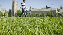 A last-minute motion to get the University of Toronto campus field designated a heritage site was defeated. (Kevin Van Paassen/The Globe and Mail)
