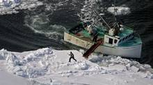 A hunter heads towards a harp seal during the annual East Coast seal hunt in the southern Gulf of St. Lawrence around Quebec's Iles de la Madeleine on March 25, 2009. (Andrew Vaughan/The Canadian Press)