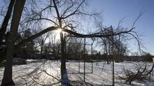A downed tree hangs over the wire mesh of a recreational back stop near Livingston Rd. and ToynbeeTrail in Scarborough, December 30, 2013 (Peter Power/The Globe and Mail)
