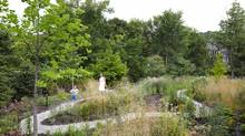 This wild garden in a wealthy Toronto neighbourhood is a gathering place for generations of family. (Ben Rahn/A-Frame/Levitt Goodman Architects)