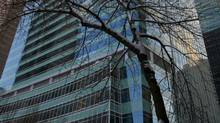 The TransCanada Tower is seen through branches in downtown Calgary in this file photo. (Jeff McIntosh/GLOBE AND MAIL)