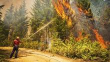 Fire crews with BC Wildfire Services keep a controlled burn in check at the Sechelt forest fire on July 9, 2015. (John Lehmann/The Globe and Mail)