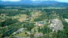 Trinity Western University is a private, faith-based school in Langley, B.C. (Handout)