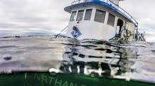 The tug boat Nathan E. Stewart is seen in the waters of the Seaforth Channel near Bella Bella, B.C., in an October 23, 2016, handout photo (April Bencze/Heiltsuk First Nation via The Canadian Press)
