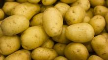 The price of potatoes rose by 20.7 per cent, year over year, in March. (Kevin Van Paassen/Kevin Van Paassen/The Globe and Mail)
