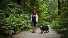 Amber Dawn takes her dog for a walk through the Lower Seymour Conservation Reserve in North Vancouver on July 18, 2012. (Rafal Gerszak For The Globe and Mail)