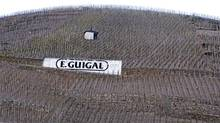 E. Guigal?s vineyards in France?s northern Rh�ne Valley were something of a gamble.