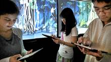 Grade 10 students Samaa Kazerouni, Cordelia Cho and George Cheng study an animated version of a Borneo rain forest at their Toronto classroom. (Moe Doiron/The Globe and Mail)
