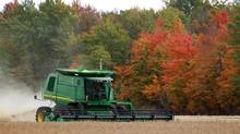Justin Baresich harvests the family's soy bean crop near Newbury, Ont., on Sunday, October 7, 2012. (Dave Chidley for The Globe and Mail)