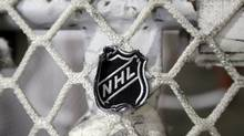 The NHL logo is seen on a goal (Mark Humphrey/Associated Press)