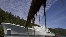 The HMCS Annapolis sits in Long Bay, off Gambier Island near Vancouver, July 23, 2011. (JOHN LEHMANN/THE GLOBE AND MAIL)