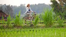 Julia Roberts cycles past rice paddies in a scene from Eat, Pray, Love. Rice is a staple in Balinese cuisine.