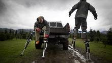 Field workers Greg Schlaak and Dale Newfield use stilts to reach the tops of trees that need shaping. (John Lehmann/The Globe and Mail)