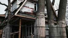 A Toronto house is being built within a circle of six oak trees.<252> (Kerry Gold)