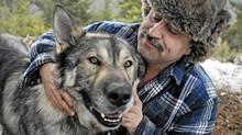 Kelowna area wolf-dog hybrid breeder Keyhan Modaressi cuddles with Simba, his 4 year old Arctic Tundra Wolf hybrid on Tuesday February 15, 2011. Simba is approximately 2 per cent dog, and 98 per cent wolf, says Modaressi. (Daniel Hayduk)