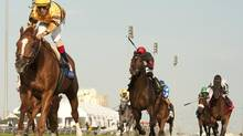 In this file photo, Wise Dan, riden by jockey John Velazquez, captures the $1,000,000 Ricoh Woodbine Mile over the E.P.Taylor turf course at Woodbine Racetrack in Toronto on Sept. 16, 2012. Valazquez again guided the six-year-old gelding to 3 1/2-length win to successfully defend their title in Sunday's race. (MICHAEL BURNS/THE CANADIAN PRESS)