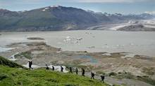 The group hikes on Goatherd Mountain in Kluane. The area is home to the continent's healthiest population of grizzly bears. RFK Jr with sons Fin and Aiden and rest of group hiking on Goat Herd Mountain, Kluane Park, with Lowell Lake and Mt Kennedy in BG (Bruce Kirkby)