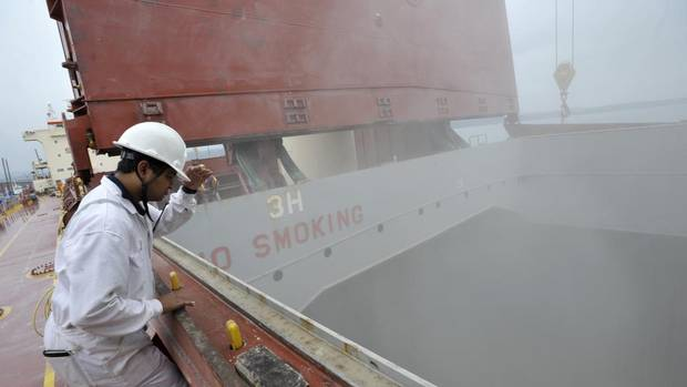 Sushin Kumar looks into the hold as a cargo ship is loaded with soybeans at the Parrish & Heimbecker grain terminal in the port of Hamilton. (J.P. MOCZULSKI FOR THE GLOBE AND MAIL)