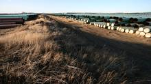 Some 15,000 pieces of pipe for TransCanada Corp.'s Keystone XL pipeline lie in a field in North Dakota on April 23, 2013. The Gascoyne pipe yard holds 350 kilometres of pipe, nearly a third of Keystone XL's route from Hardisty, Alta. to Steele City, Neb. (Nathan VanderKlippe/The Globe and Mail)